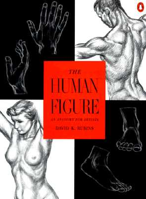 The Human Figure By Rubins, David K.